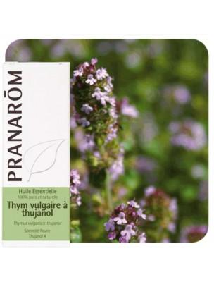 Thym vulgaire à thujanol - Huile essentielle de Thymus vulgaris ct thujanol 5 ml - Pranarôm