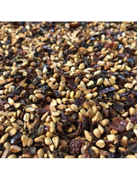 Cynorrhodon Bio - Baie avec graine concassée 100g - Tisane de Rosa canina L.