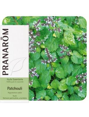 Patchouli - Huile essentielle de Pogostemon cablin 5 ml - Pranarôm