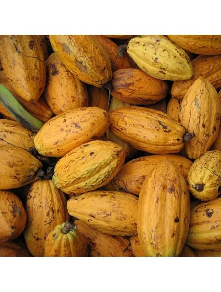 Eclats de Fèves de Cacao sucrées Bio - Magnésium et Antioxydants SuperFoods 200g - Purasana