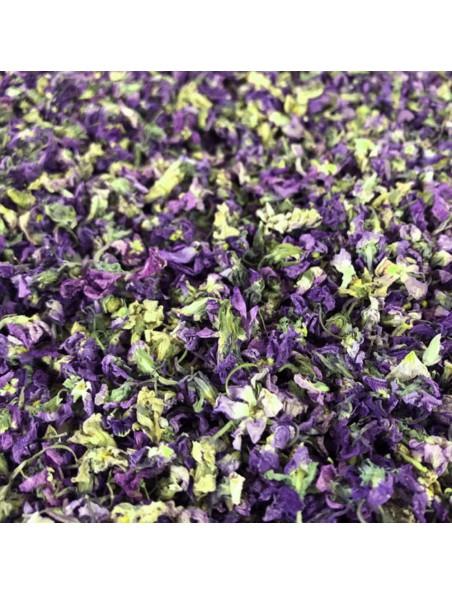 Violette Bio - Fleurs 20g - Tisane de Viola odorata