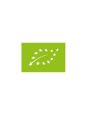 https://www.louis-herboristerie.com/276-home_default/ginkgo-bio-circulation-et-memoire-70-gelules-purasana.jpg