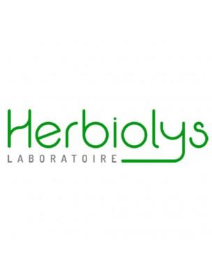 Bétoine officinale Bio - Digestion Teinture-mère de Syachys officinalis 50 ml - Herbiolys