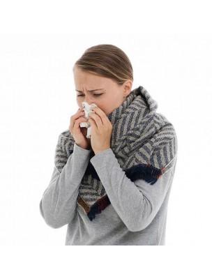 Kit hiver pour adulte