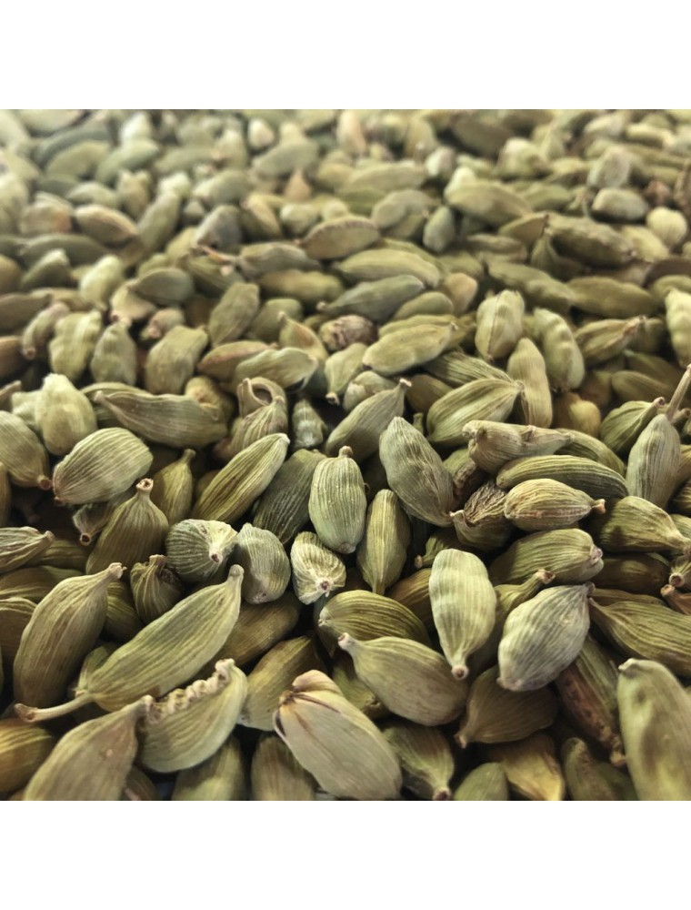 Cardamome - Fruit entier 100g - Tisane d'Elettaria cardamomum