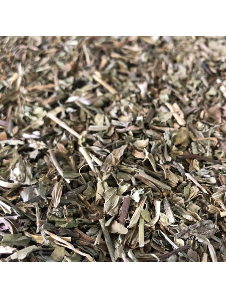 Plantain rond - Feuille coupée 100g - Tisane de Plantago major