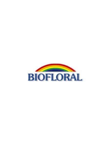 Concentration, mémoire et vitalité  - 20 infusettes - Biofloral