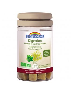 Digestion - Cubes à mâcher 60 g - Biofloral