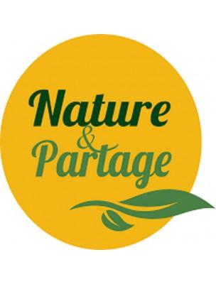 Eponge Konjac au Citron - Nature et Partage