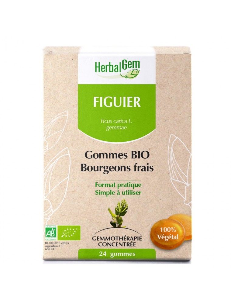 Figuier bourgeons gommes Bio - Stress et Digestion 24 gommes - Herbalgem