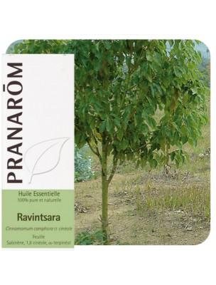 Ravintsara - Huile essentielle de Cinnamomum camphora 10 ml - Pranarôm