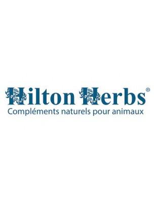 https://www.louis-herboristerie.com/29596-home_default/virex-sarcoides-et-verrues-chiens-et-chevaux-100-g-hilton-herbs.jpg