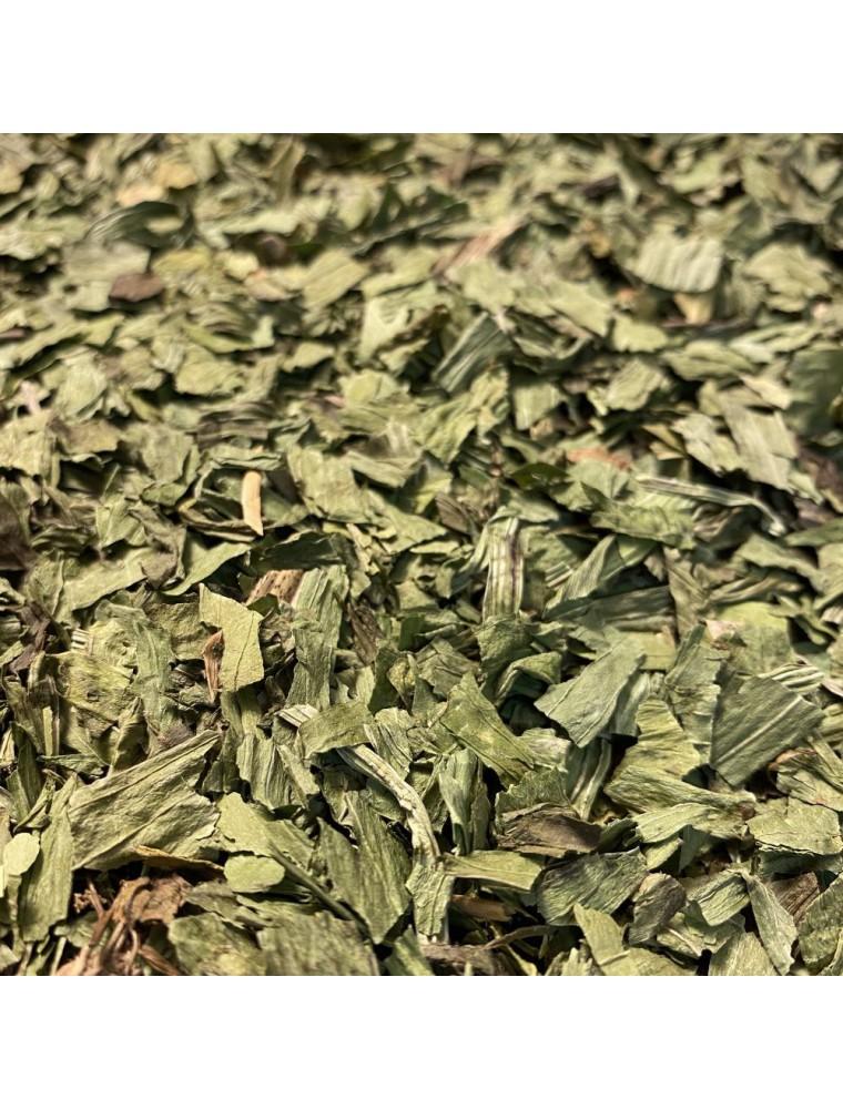 Plantain lancéolé - Feuille coupée 100g - Tisane de Plantago lanceolata