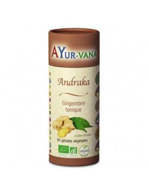 Andraka (Gingembre indien) Bio - Gingembre tonique 60 gélules - Ayur-Vana