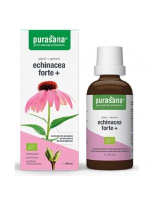 Echinacea Forte + Bio - Système immunitaire 100 ml - Purasana