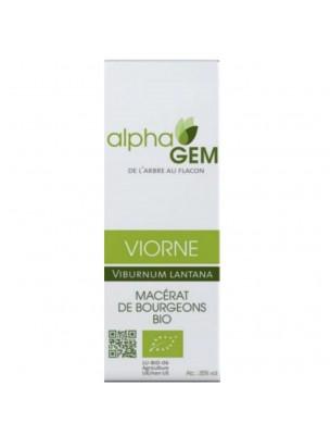 Viorne Macérat de bourgeons Bio - Viburnum lantana 50 ml - Alphagem