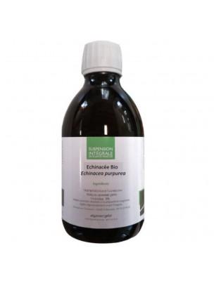 Echinacée Bio - Suspension Intégrale de Plante Fraîche (SIPF) 300 ml - Synergia