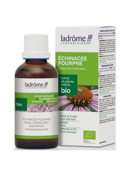 Échinacée pourpre Bio - Défenses immunitaires Teinture-mère Echinacea purpurea 100 ml - Ladrôme