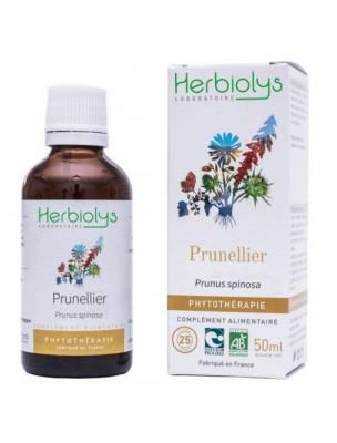 Prunellier Bio - Transit et Vitamine C Teinture-mère Prunus spinosa 50 ml - Herbiolys