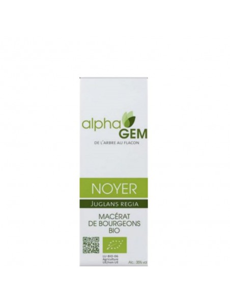 Noyer Macérat de bourgeons Bio - Juglans regia 15 ml - Alphagem