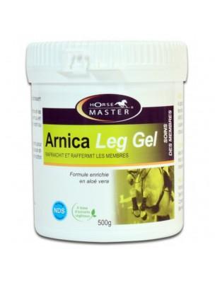 Arnica Leg Gel - Soin des membres des chevaux 500 grammes - Horse Master