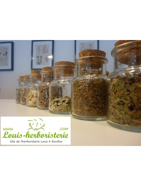 Ginkgo biloba - jus de plante fraîche 200 ml – Salus
