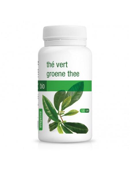 Thé vert Bio - Minceur 120 gélules - Purasana