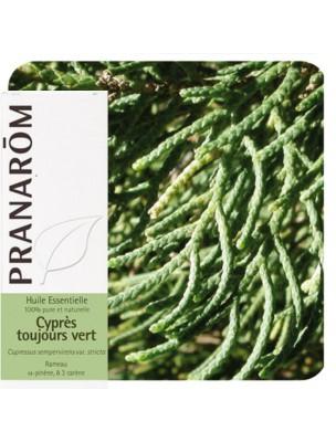 https://www.louis-herboristerie.com/36089-home_default/cypres-de-provence-cypres-toujours-vert-huile-essentielle-de-cupressus-sempervirens-10-ml-pranarom.jpg