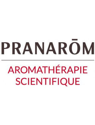 Sauge à feuilles de lavande Bio - Perles d'huiles essentielles - Pranarôm