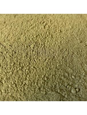 Pissenlit Bio - Partie aérienne poudre 100g - Tisane Taraxacum gpe officinale
