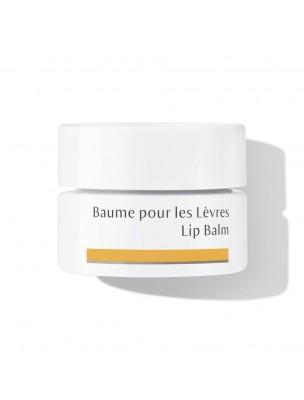 Baume pour les Lèvres - Soin des lèvres 4,5 ml - Dr Hauschka