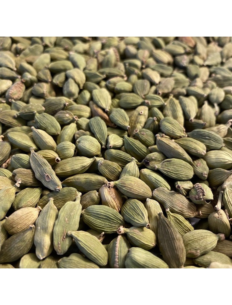 Cardamome Bio - Fruit entier 100g - Tisane d'Elettaria cardamomum