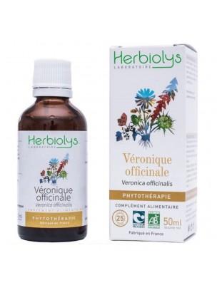 Véronique officinale Bio - Digestion et Migraines Teinture-mère 50 ml - Herbiolys
