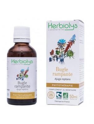 Bugle rampant Bio - Plaies Teinture-mère 50 ml - Herbiolys