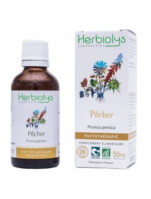 Pêcher Bio - Transit Teinture-mère Prunus persica 50 ml - Herbiolys