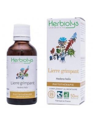 Lierre grimpant Bio - Articulations et Respiration Teinture-mère Hedera helix 50 ml - Herbiolys