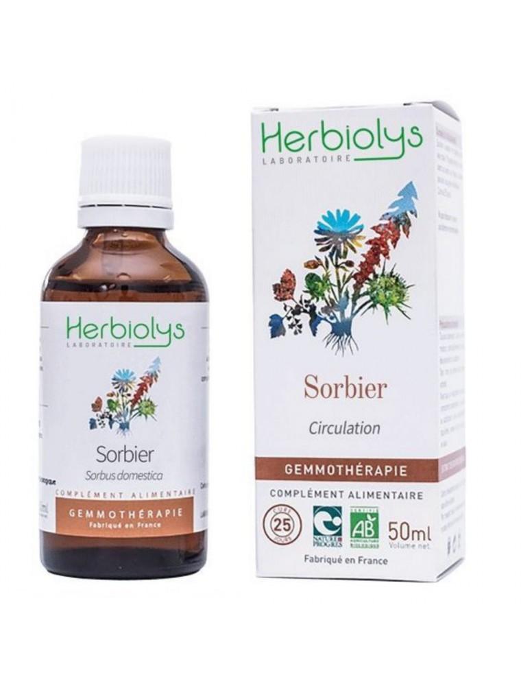 Sorbier domestique Macérât de bourgeon Bio - Circulation 50 ml - Herbiolys