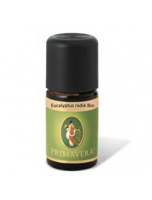 Eucalyptus radié Bio - Huile essentielle Eucalyptus radiata 5 ml - Primavera