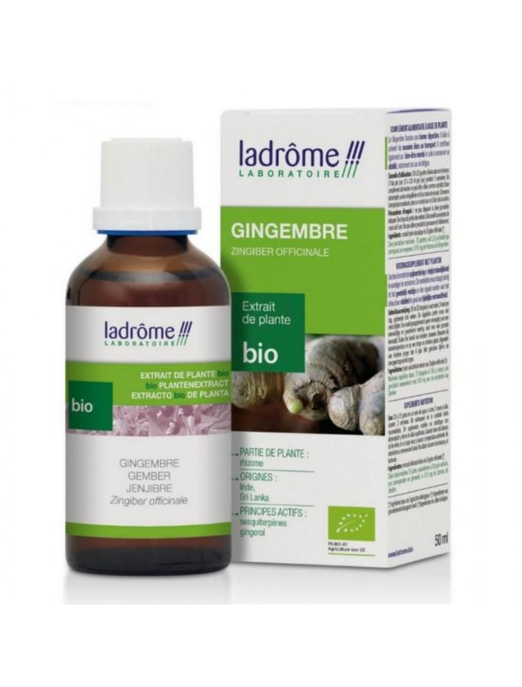 Gingembre Bio - Digestion Teinture-mère Zingiber officinale 50 ml - Ladrôme