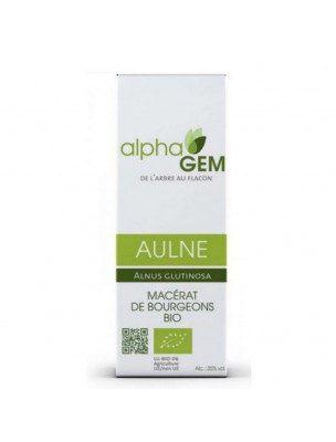 Aulne Macérat de bourgeons Bio - Alnus glutinosa 50 ml - Alphagem