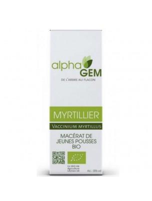 Myrtillier Macérat de jeunes pousses Bio - Vaccinium myrtillus 15 ml - Alphagem