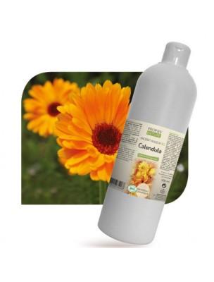 Calendula Bio - Macérât huileux de Calendula officinalis 500 ml - Propos Nature
