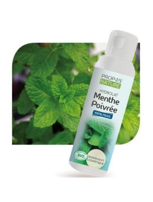Menthe poivrée Bio - Hydrolat de Mentha piperita 100 ml - Propos Nature