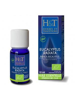 Eucalyptus radié Bio - Huile essentielle d'Eucalyptus radiata 10 ml - Herbes...