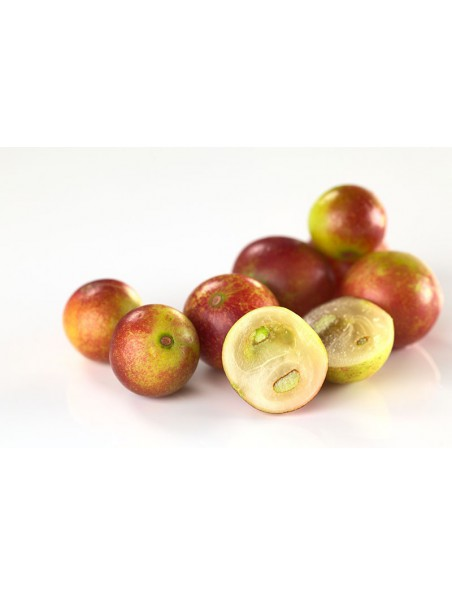 Camu camu en poudre Bio - Vitamine C & Phytonutriments 100g - Purasana