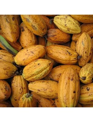 https://www.louis-herboristerie.com/4120-home_default/feves-de-cacao-bio-magnesium-et-antioxydants-superfoods-200g-purasana.jpg
