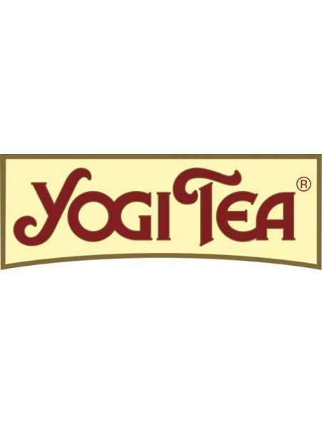 Gingembre Hibiscus - 17 sachets - Yogi Tea