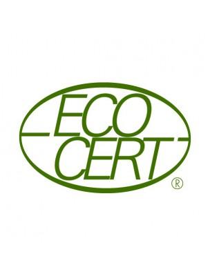 https://www.louis-herboristerie.com/41909-home_default/masque-charbon-vegetal-active-bio-purifiant-50ml-sfb-laboratoires.jpg