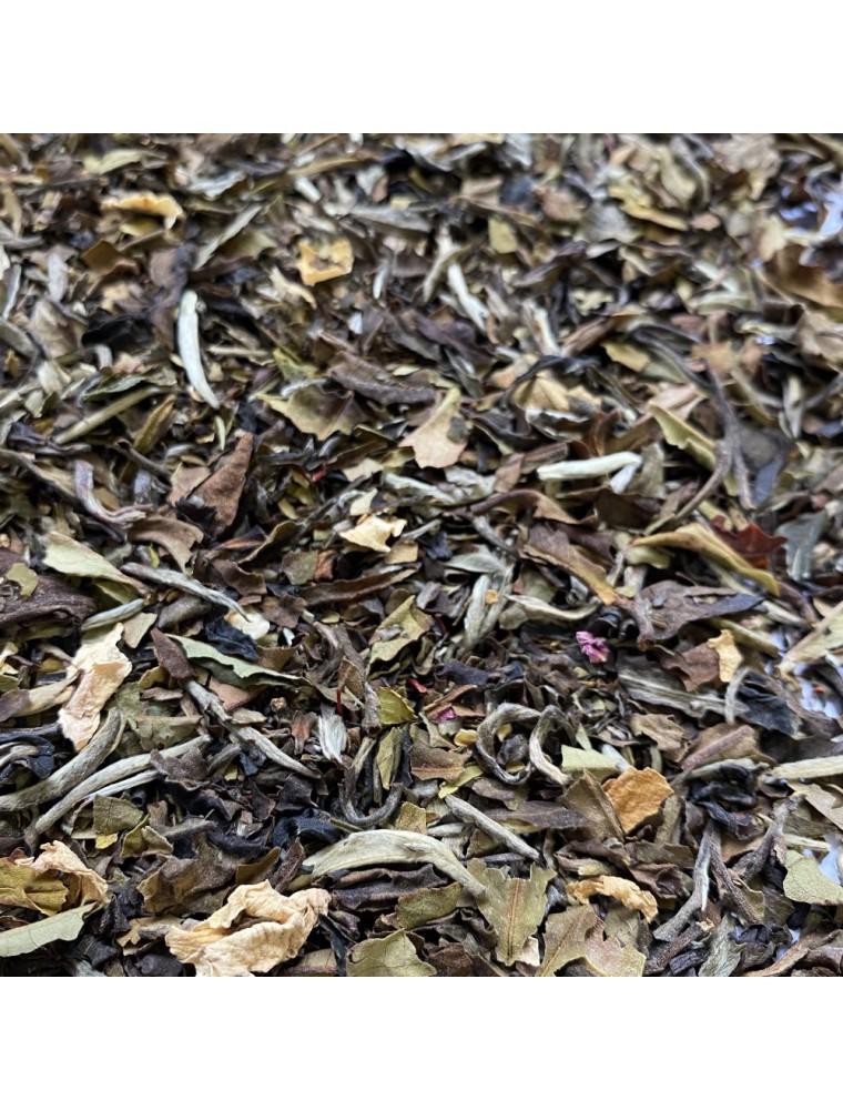 Thé Mangue-Pêche-Safran Bio - Thé blanc ardennais 30 grammes - Le Safran