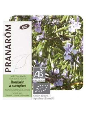 Romarin à camphre Bio - Rosmarinus officinalis 10 ml - Pranarôm